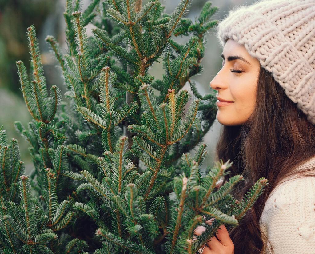 bezorgen kerstbomen duurzaam met bumbal